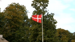 Danish Flag in a storm - stock footage
