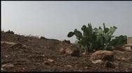 Cactus Mountain Stock Footage