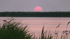 Sunset on lake. Stock Footage