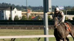 horse and jockey - stock footage