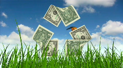 Dollar bills as recycling symbol in grass  Stock Footage
