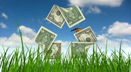 Stock Video Footage of Dollar bills as recycling symbol in grass