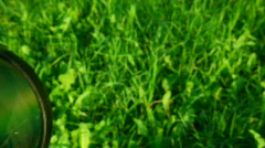 Loupe moving across green grass background Stock Footage