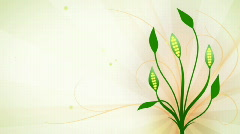 Greenish floral animation HD720 Stock Footage