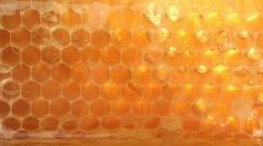 Honeycombs loop - stock footage