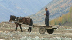 Traditional horse and goods cart Stock Footage