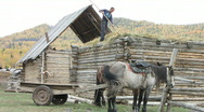 Stock Video Footage of traditional mud roof making