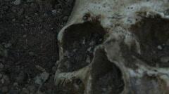 Human Skull 6 Stock Footage