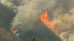 Forest fire, helo flies through frame Stock Footage