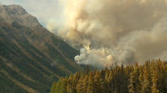 Forest fire, spectacular, #2 Stock Footage