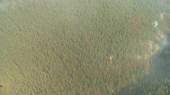 Aerial forest fire, helicopter with torcher Stock Footage