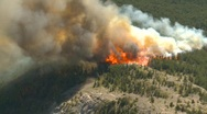 Forest fire, big flames aerial. Dramatic Stock Footage