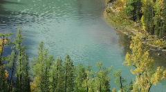 Autumn river close up Stock Footage