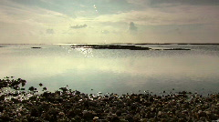 Calm coastal area with water and pebbles Stock Footage