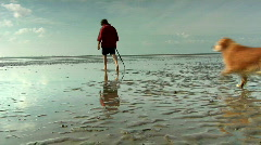 People and dog walking on wetlands (wadden) Stock Footage