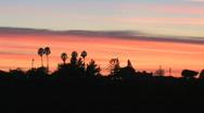 Sunset Silhouette Stock Footage