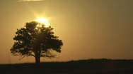 P00662 Time Lapse of Sunrise on Prairie Stock Footage