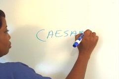 "Beautiful Nurse Writes ""Caesarean Section"" on a White Board (close-up) Stock Footage"