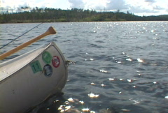 Canoeing - stock footage