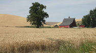 Stock Video Footage of American Farmland