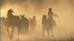 Cowgirls Roundup Horses Sunset 12 59.94 Stock Footage