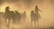 Stock Video Footage of Cowgirls Roundup Horses Sunset 12 59.94