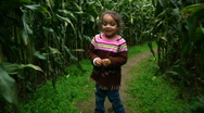 Girl Walks Thru Corn Maze 987 Stock Footage