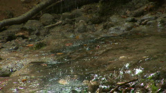 Dried waterfall ''Silver jet'' Stock Footage