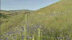 Spring Mountain Biking 7 23.98 Stock Footage