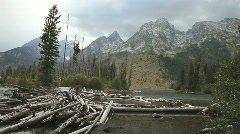 Logs in River at Grand Tetons National Park Stock Footage