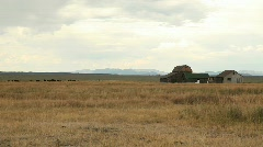 Mormon Barn Cabin in Grand Tetons National Park Stock Footage