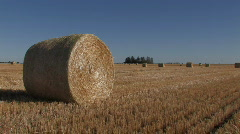 Large hay bale Stock Footage