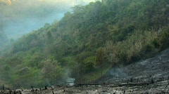 Slash and Burn Pan Stock Footage
