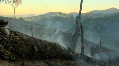 Smoking Log Stock Footage