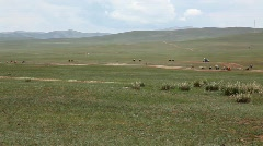 Final horse racing at the 2009 Naadam Festival, Mongolia Stock Footage