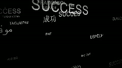 Word SUCCESS spelt in different languages Stock Footage