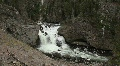 River Flowing in Yellowstone National Park Footage