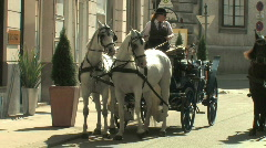 Horse Drawn Carriages in Europe - stock footage