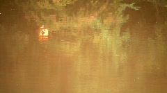 River reflections Stock Footage