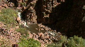 A Canyon In The Jemez Mountains Footage