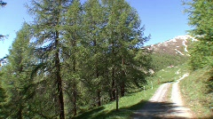 Hiking trail Stock Footage