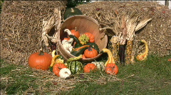 Thanksgiving Day spirit of the fall 01. Stock Footage