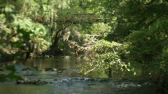 Suspension Bridge on Hillsborough River Stock Footage