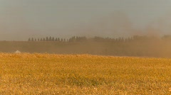 Agriculture, grain harvest combine, head on 3/4, medium long Stock Footage