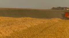Agriculture, grain harvest combine, long shot, through frame Stock Footage