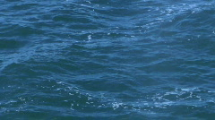 One Whale Surfacing, Breath, Dive Stock Footage