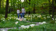 Family with little girl walks on spring park Stock Footage