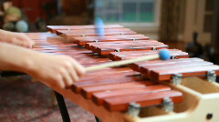 Boy playing marimba Stock Footage