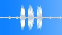 Single call of treefrog Smilisca phaeota - sound effect