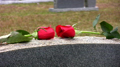Close up of roses on grave Stock Footage